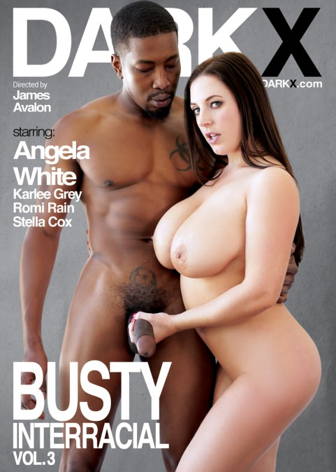 Busty Interracial Vol. 3 Dvd Cover