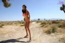 Fun In The Desert Sun picture 8