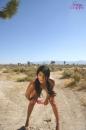 Fun In The Desert Sun picture 9