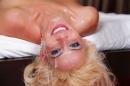 Mikki Lynn, picture 358 of 367