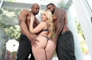 DX-AJ AppleGate DP picture 11